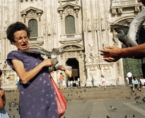 Bird Attack. Foto ©Martin Parr